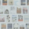 10 Years and 100 Books Agao