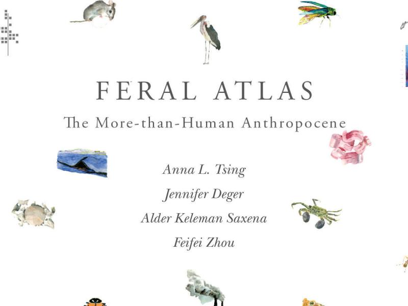 Feral Atlas COver