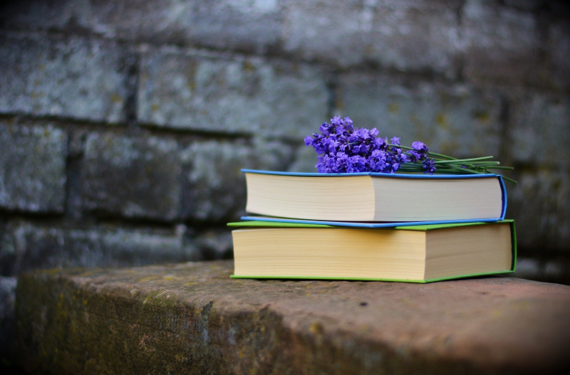 Pile of books with asmall bunch of purple flowers on top in front of a stone wall